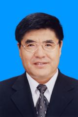 Mr. WANG Yupu